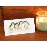 Fairy Penguin Gift Card
